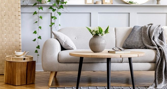 home staging example of loveseat with coffee table throw rug plants and other small items.
