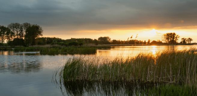 photo of lake oconee near the del webb active adult community at lake oconee