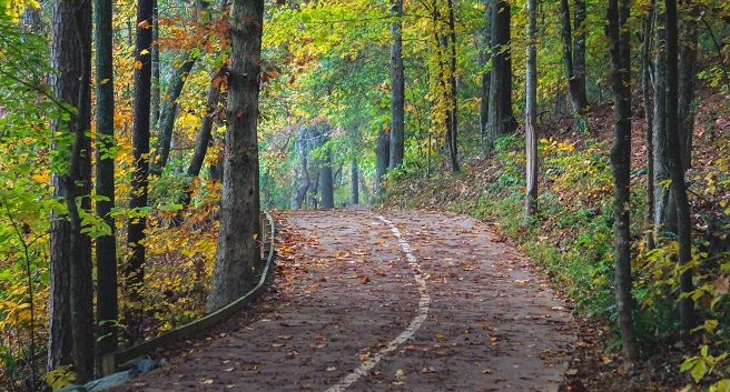 path through the Suwanee Ga Greenway with colorful trees and fall leaves