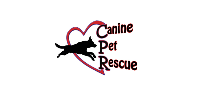 Canine Pet Rescue: Finalist in Gwinnett Chamber IMPACT Awards