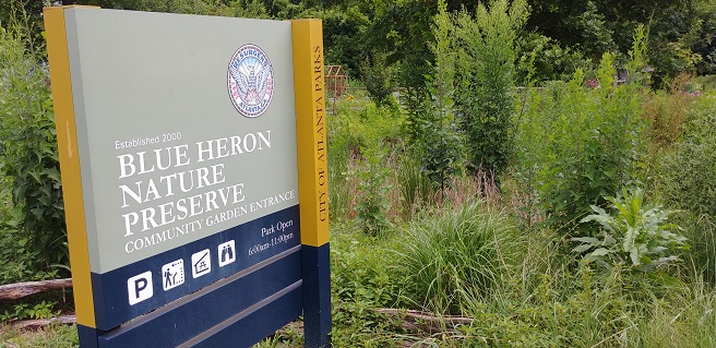 Blue Heron Receives $30K for Urban Wetland Restoration in Buckhead