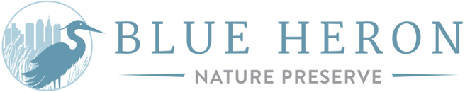 Blue Heron Receives $30K for Urban Wetland Restoration in Buckhead