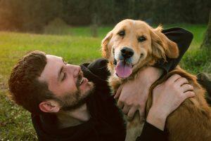 Dog and Owner take break in dog park