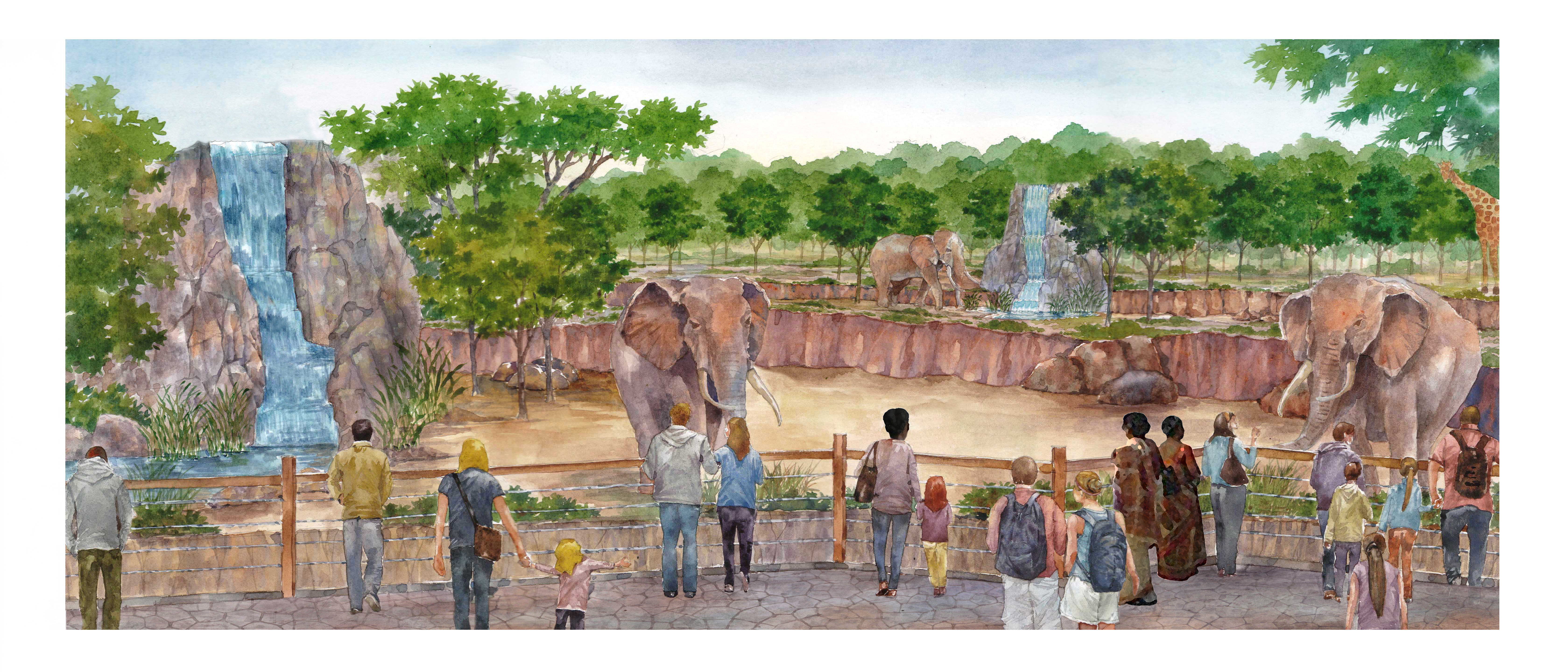 Zoo Atlanta to Unveil All-New African Savanna this Summer
