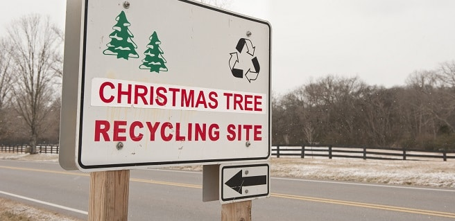 Metro Atlanta Christmas Tree Recycling Options