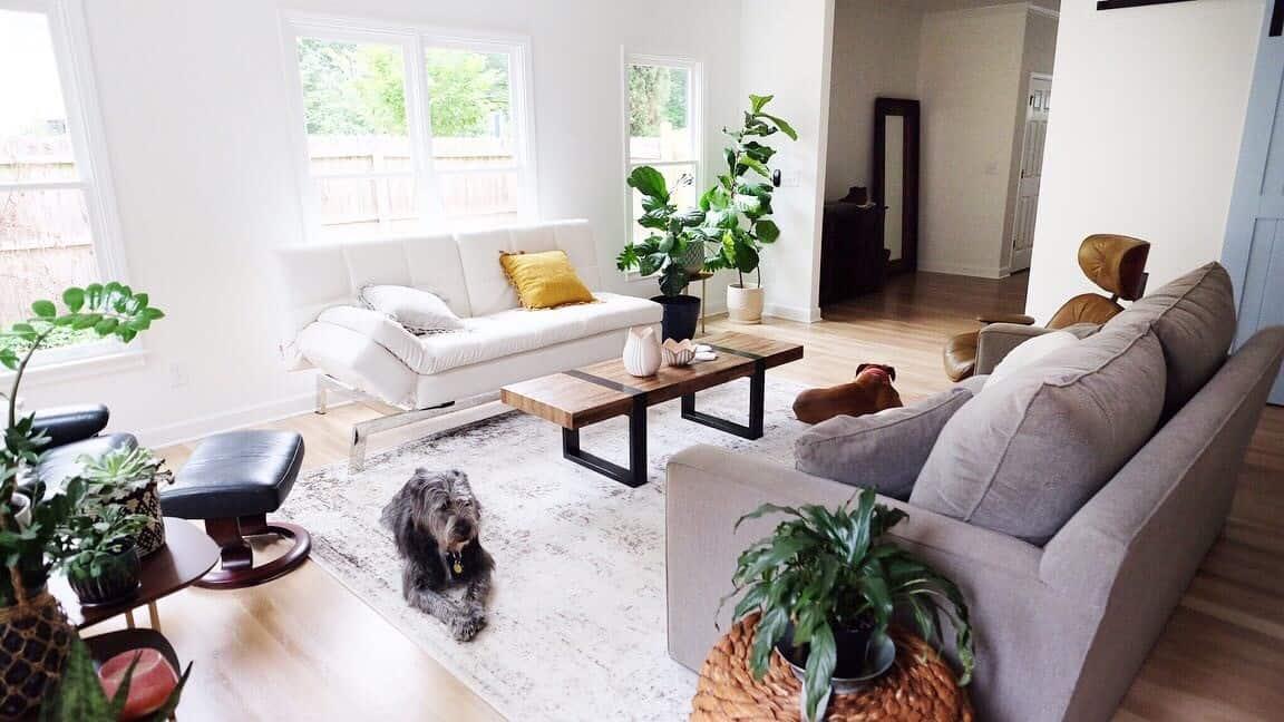 Modern Interior Home Renovation Living Room