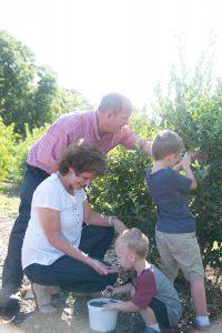 Martin family picking blueberries at o5 farm