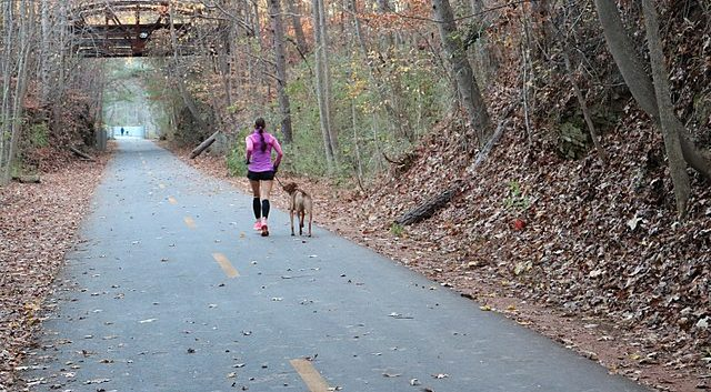 Silver Comet Trail with runner and dog