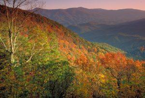 Ft Mtn overlook fall